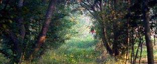 Scopri le escursioni organizzate da Lapresa